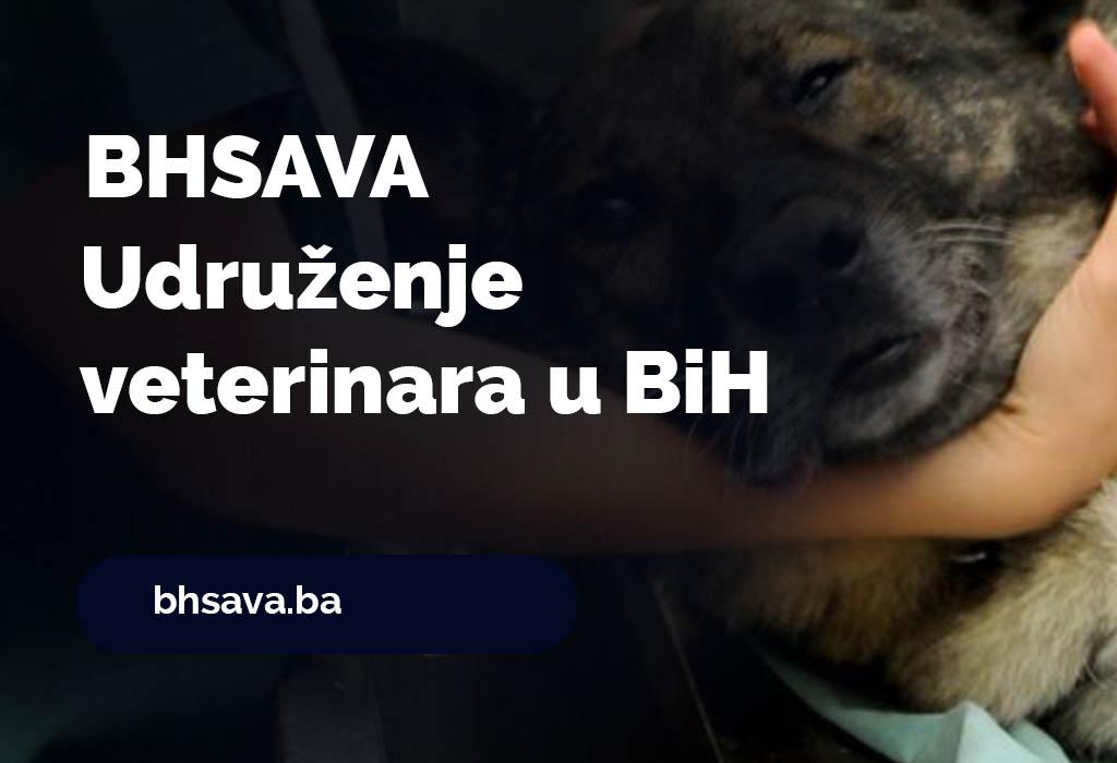 Udruženje veterinara za male životinje u BiH - BHSAVA